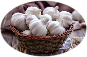 garlic_oval
